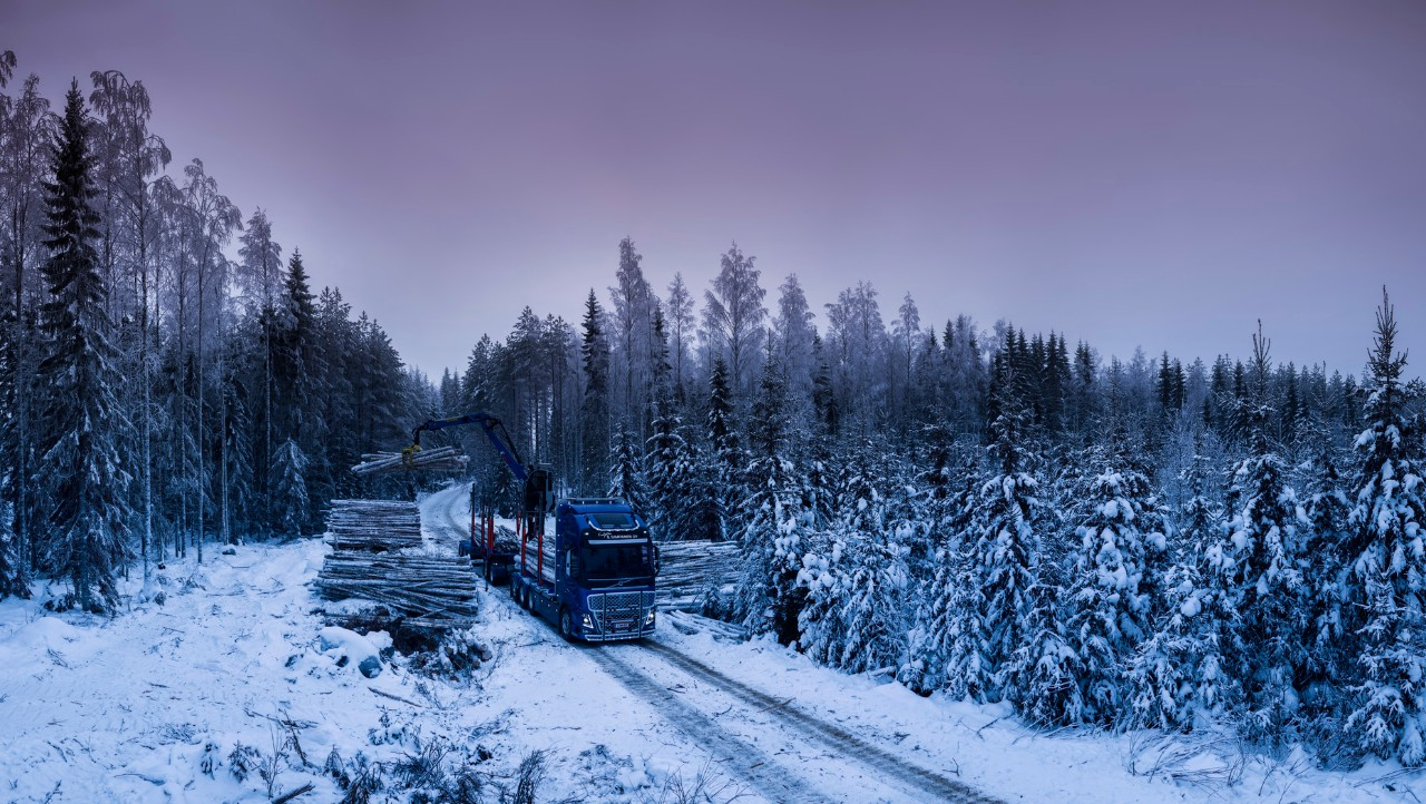 Loading timber in a Finnish forest.