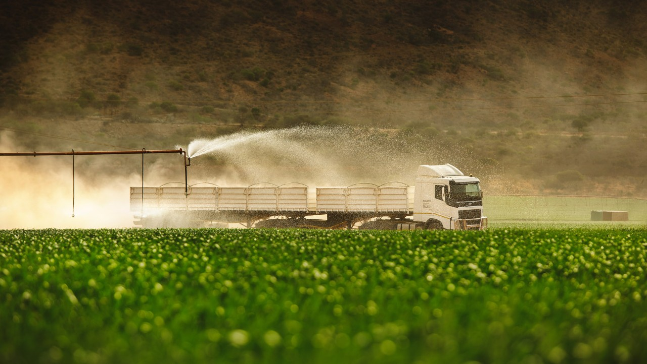 A Volvo FH drives past a green field being watered with a sprinkler